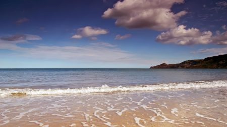 coast, sea, foam