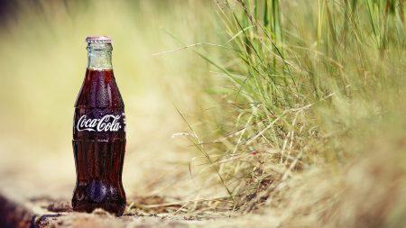coca-cola, bottle, grass