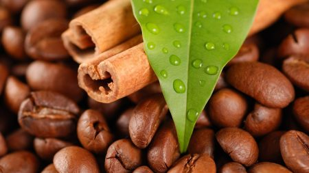 coffee beans, cinnamon, leaves