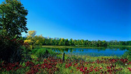 colors, paints, early autumn