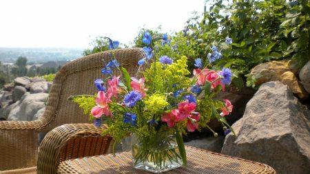 cornflowers, alstroemeria, flowers