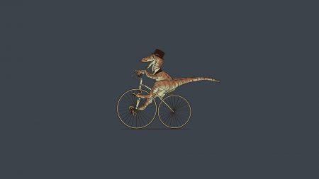 crocodile, ride, bike