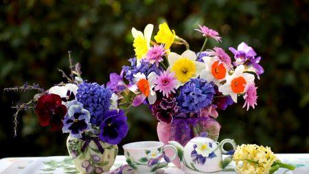 daffodils, hyacinths, pansies