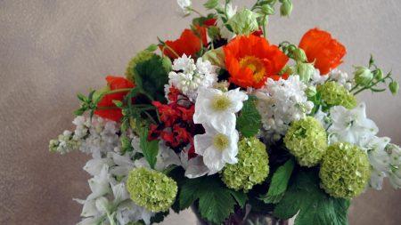 daffodils, hydrangea, poppies