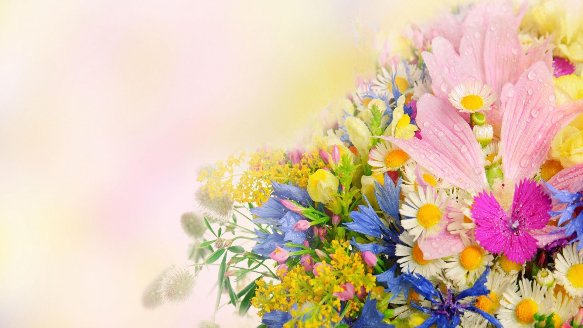 запросу тюнинг цветы для поздравления сотрудникам этого будет напрямую