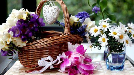 daisies, flower, glass