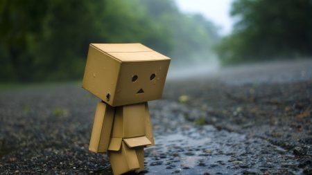 danboard, cardboard robot, rain