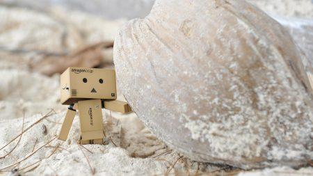 danboard, cardboard robot, sand
