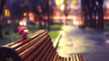 danboard, scarf, bench