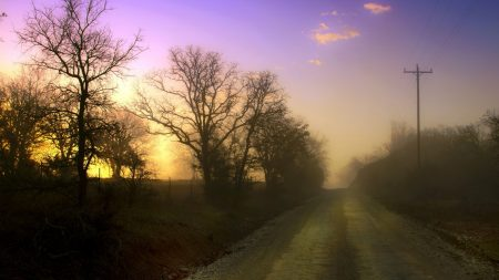 dawn, road, fog