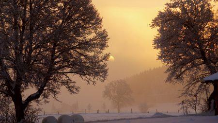 dawn, winter, sun