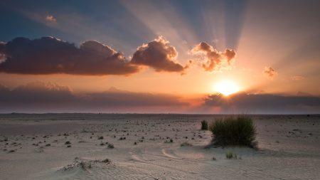 desert, decline, sun