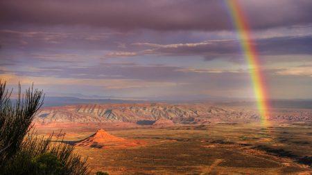 desert, rainbow, after a rain