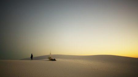desert, sand, traveler
