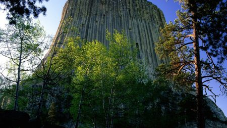 devils tower national monument, wyoming, mountain