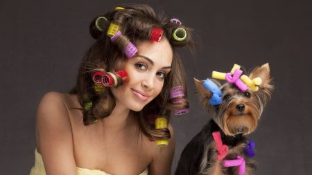 dog, girl, curlers