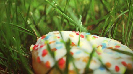 donut, sprinkling, colorful