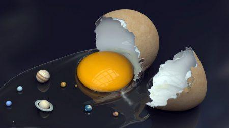 eggs, shell, yolk
