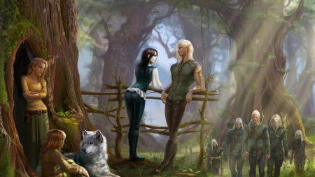 elves, fence, forest