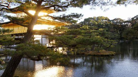 evening, japan, mansion