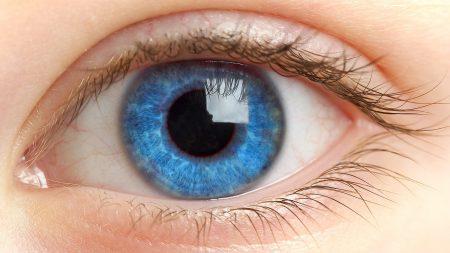 eyes, eyelashes, blue
