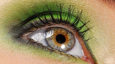 eyes, eyelashes, eye shadow