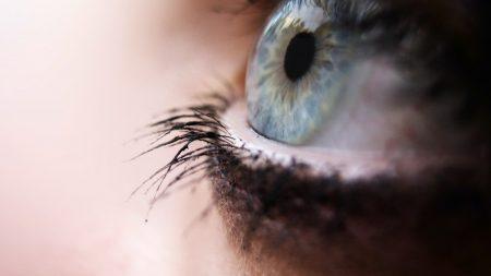 eyes, eyelashes, pupil