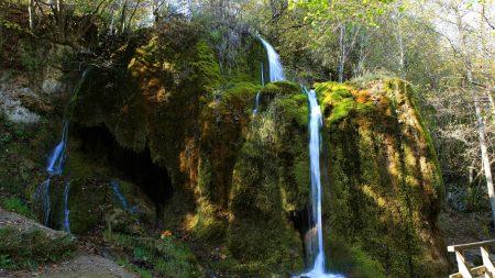falls, germany, wood
