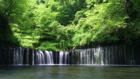 falls, trees, greens