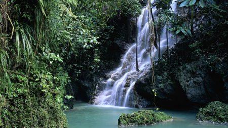 falls, vegetation, greens