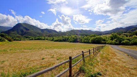 fence, grass, sky