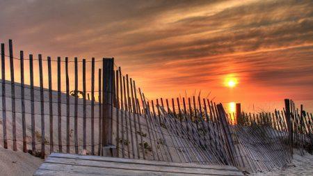 fence, laths, sun