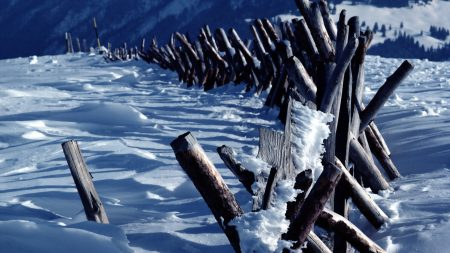 fence, logs, mountains