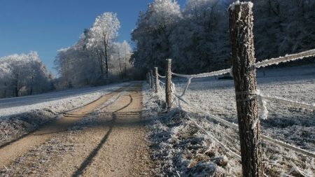 fence, stakes, hoarfrost