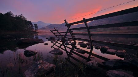 fence, water, stones