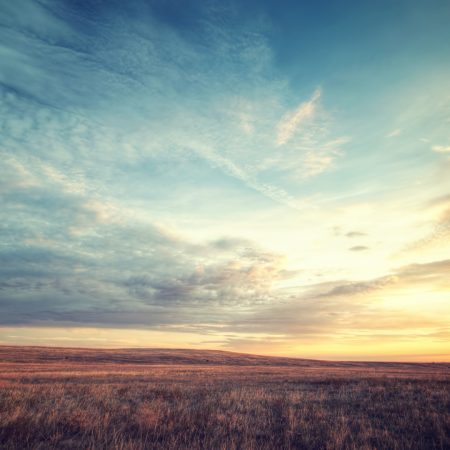 field, dawn, sky