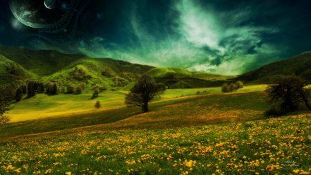field, hills, flowers