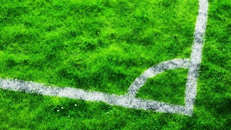 field, marking, grass