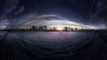 field, panorama, grass