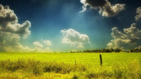 field, pasture, sky