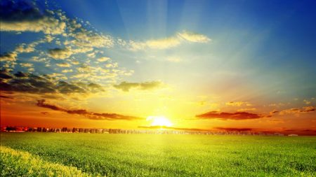 field, sun, clouds