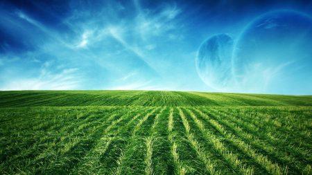 fields, vegetation, planets