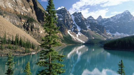 fir-trees, lake, mountains