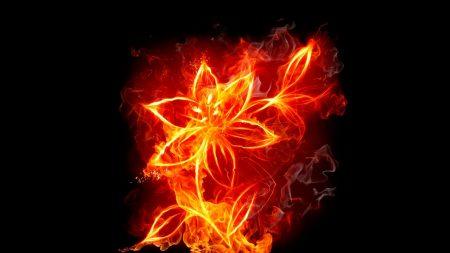 fire, flower, form