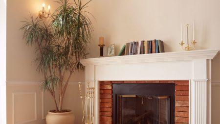 fireplace, flowers, plants