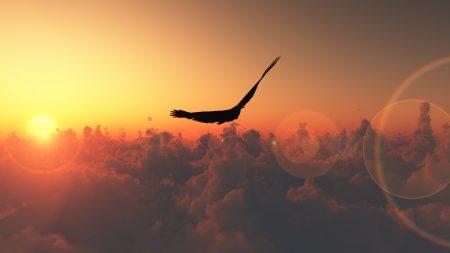 flight, clouds, sun