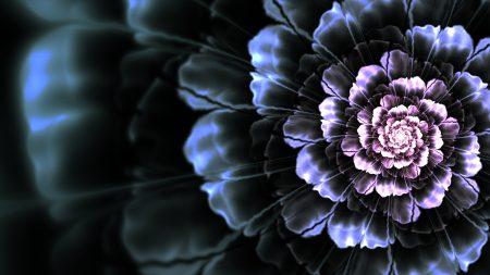 flower, background, bright