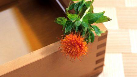 flower, box, corner