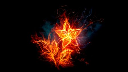 flower, fire, background