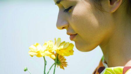 flower, girl, smell